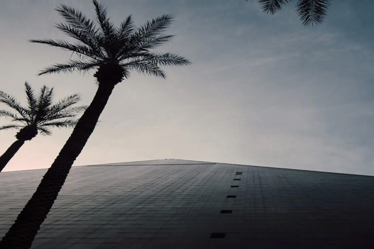 modern building with palm trees