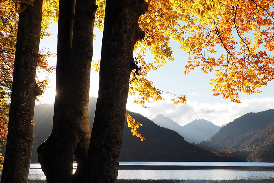 lake with mountains in distance